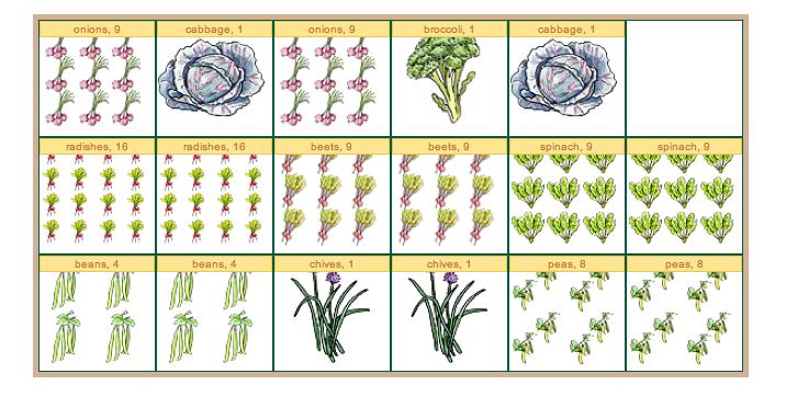 Garden Plan - 2012